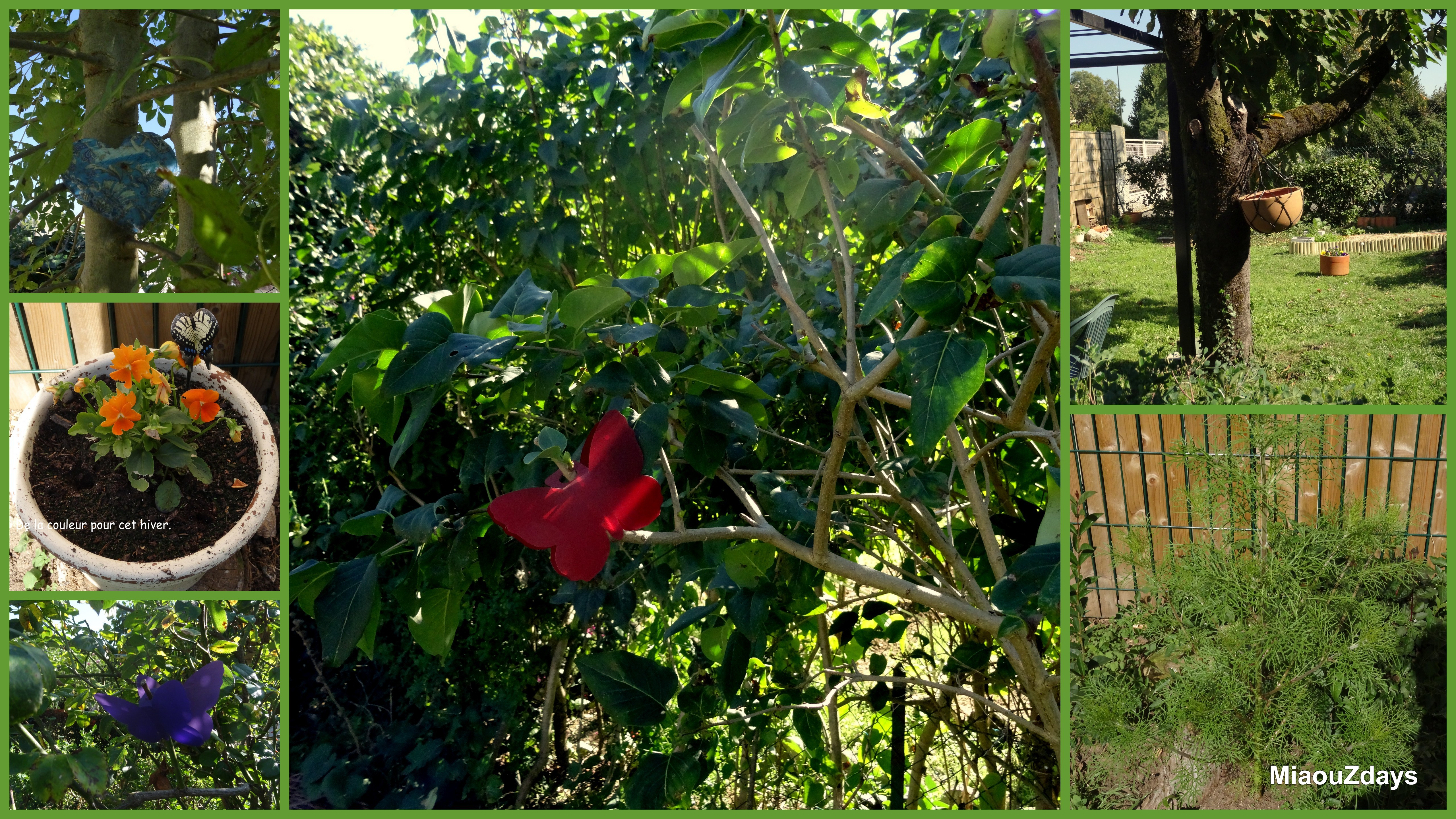 jardin oct 15 barrobjectif