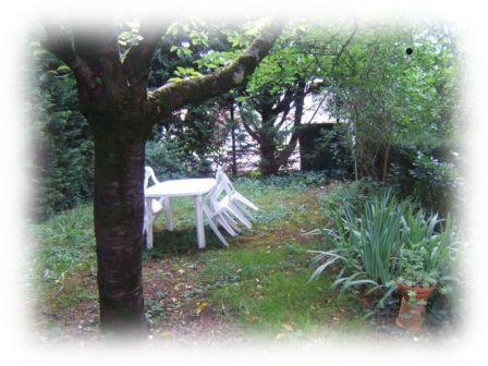 jardin avant